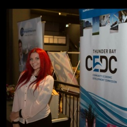 Representing the CEDC 2015