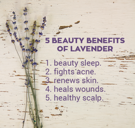 5-beauty-benefits-of-lavender-via-poorandpretty