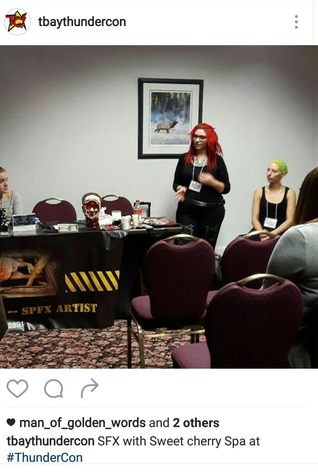 Hosting Presentation at Thundercon 2017